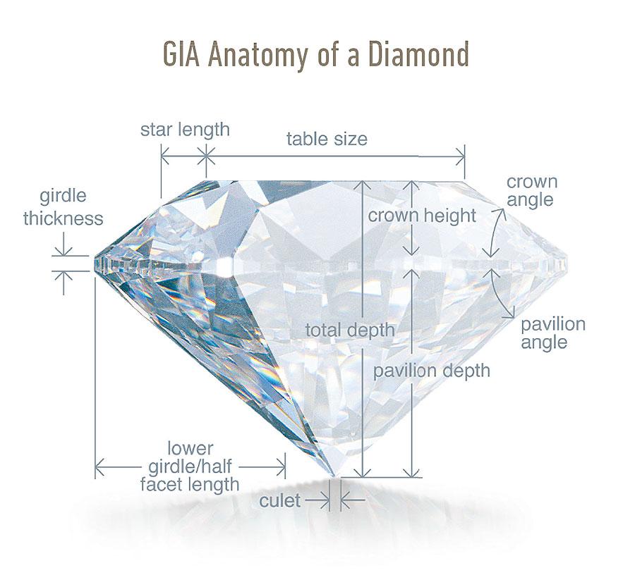 Anatomy Diamond Commisions